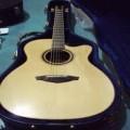 Veelah Acoustic Guitar V3F