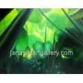 ขายภาพวาดสีน้ำมัน ภาพวาดตกแต่งห้อง ภาพวาดใบบอน01