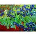 ขายภาพวาดรีโปรดักชั่นของศิลปินต่างประเทศ Irises