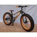 จักรยานแฟตไบค์ WCI รุ่น Demon ล้อ 4.9 ดิสน้ำมัน