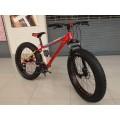 จักรยานล้อโต LOVE FREEDOM รุ่นล่ามาใหม่ เฟรมอลูมิเนี่ยม วงล้อ26x4.0