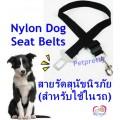 สายรัดสุนัขนิรภัย(สำหรับใช้ในรถ)Nylon Dog Seat Belts ใช้คู่กับชุดรัดอก เพื่อความปลอดภัยเป็นระเบียบ