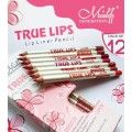 ME NOW TRUE LIPS Lip Liner Pencil เซ็ตลิปไลเนอร์