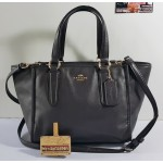 COACH 33537 CROSBY MINI CARRYALL IN SMOOTH LEATHER