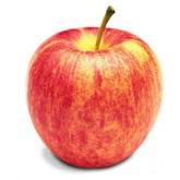 แอปเปิ้ล สายพันธ์ุ กาล่า (Gala)