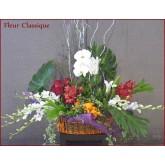 กระเช้าดอกไม้ต้นกล้วยไม้ (flower basket)