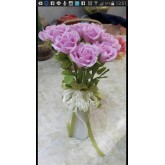 ดอกมะลิจากดินไทย