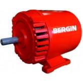 ไดร์ปั่นไฟ เพลาลอย BERGIN 3 KVA เชื่อม 3.2 มม