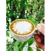 Piccolo latte ลาเต้