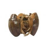 กระถางแมงตับเต่าจากกะลามะพร้าว