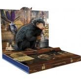 Fantastic Beasts and Where to Find Them สัตว์มหัศจรรย์และถิ่นที่อยู่ S16345RFP+R