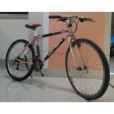 จักรยานเสือภูเขา เฟรม CABON ยี่ห้อ LAND GEAR