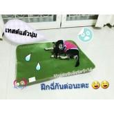 Pee pad mat แผ่นรองซับฉี่สุนัขแบบซักได้ไซส์ XL (69 x 92cm )มี 7 สี