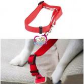 สายรัดสุนัขนิรภัย(สำหรับใช้ในรถ)Nylon Dog Seat Belts ใช้คู่กับชุดรัดอก สีแดง