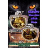 รกแมวโพง, พระอาจารย์โอ พุทโธรักษา,พุทธสถานวิหารพระธรรมราช,จ.เพชรบูรณ์