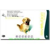 Revolution สุนัขหนัก 21 - 40 กก. (เขียว) ยาหยดกำจัดเห็บหมัด ไร ป้องกันพยาธิหนอนหัวใจ (3 หลอด)