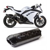 TWO BROTHERS BLACK SERIES CARBON SLIP ON EXHAUST (Z250 2013)