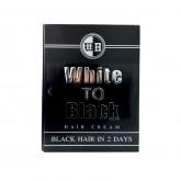 White to Black ครีมเปลี่ยนผมขาวกลับดำ 40 ml