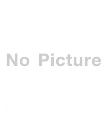 ลูกสุนัขมิเนเจอร์ ชเนาเซอร์ เพศผู้  สี SaltPepper   เชือกคอสีฟ้า