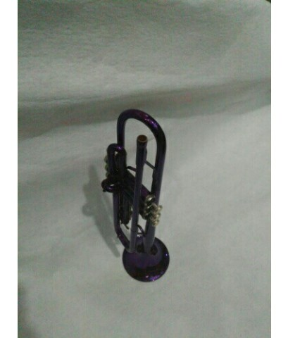 ทรัมเปท บีแฟลต Wisdom GE003 สีม่วง ขาตั้ง กล่องและอุปกรณ์ครบชุด