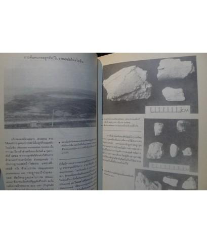โบราณคดีภาคเหนือ เหมืองแม่เมาะ ออบหลวง บ้านยางทองใต้