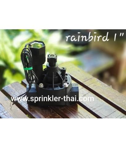 วาล์วไฟฟ้า RAINBIRD 1 นิ้ว