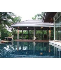 (บ้านไปแล้ว) บ้านเช่าบางนา / ให้เช่า! บ้านสวยพร้อมสระว่ายน้ำ ใกล้ศูนย์ไบเทค สี่แยกบางนา เฟอร์ครบ สวน