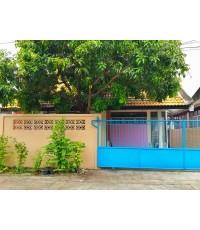 (บ้านเช่าไปแล้ว) บ้านเช่ารามอินทรา / บ้านเช่าราคาถูก บ้านเดี่ยวชั้นเดียว ทำเลดีใกล้สวนสยาม