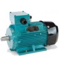 [F1481] SERIES 10 [IE1] BU-DF225M ELECTRIC MOTOR หน้าแปลน/B5 มอเตอร์ไฟฟ้า มาตฐาน ราคา 58675.80 บาท