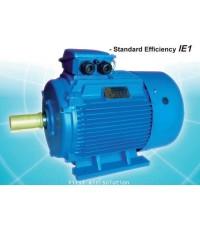 Inline motor 0.75kW (1HP)