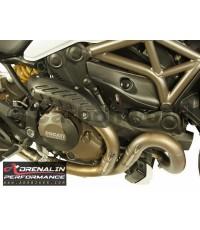 Carbon World- ครอบหม้อพักน้ำ (Engine side panel cover ) สำหรับ Monster 821
