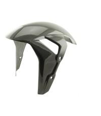 Carbon World - บังโคลนหน้าคาร์บอน (Front Fender Carbon)  สำหรับ S1000RR 2020+