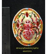 แมงมุมดักทรัพย์ รูปไข่ ครูบากฤษณะ...3