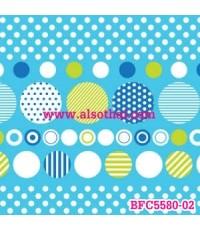 BFC5580-02