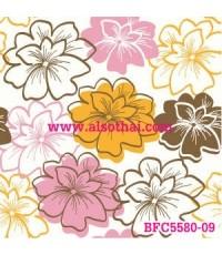BFC5580-09