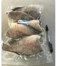 ปลาสลิดแดดเดียว แพ็คสูญญากาศ ตราปลาอนามัย