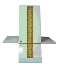 เครื่องวัดความยืดหยุ่นของกล้ามเนื้อและเส้นเอ็น
