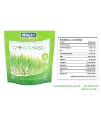Bioglan Superfoods By Matt Dawson Wheatgrass Powder