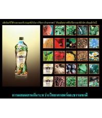 *+Intra อินทรา น้ำผลไม้เพื่อสุขภาพ จากแคนาดา ลดความดัน ภูมิแพ้ โรคเบาหวาน ต้านมะเร็ง*+850+*+