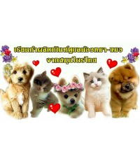 อาทิตย์ 6 พฤศจิกายน 2559 เรียนทำผลิตภัณฑ์สมุนไพรไทย ดูแลสุขภาพผิวหนังและความงามสุนัข  แมว