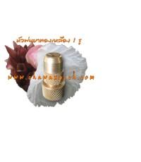 หัวพ่นยาทองเหลือง 1 รู รุ่นประหยัดน้ำ (Clip)