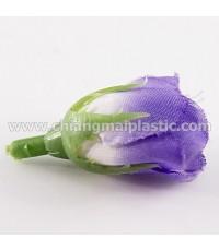 ดอกกุหลาบตูม สีม่วงก้นขาว
