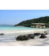โปรแกรมทัวร์,แพ็คเกจทัวร์,เกาะขาม,ชลบุรี,อุทยานใต้ทะเลเกาะขาม,เกาะกูด,สัตหีบ,ชมปะการังเกาะขาม