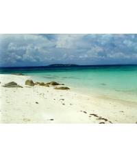 โปรแกรมทัวร์,แพ็คเกจทัวร์,ดำน้ำระยอง,ดำน้ำดูปะการังระยอง,ดำน้ำเกาะมันใน,ดำน้ำเกาะมันกลาง,ดำน้ำเกาะ