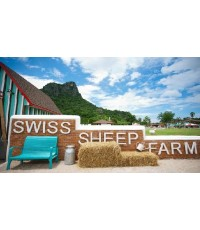 Swiss Sheep Farm  ฟาร์มแกะ แบบสวิสเซอร์แลนด์   อำเภอชะอำ, เพชรบุรี