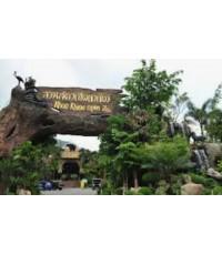 โปรแกรมท่องเที่ยว,โปรแกรมเที่ยว,ชลบุรี,บางแสน,สวนสัตว์เปิดเขาเขียว,ตลาดเก่า 133 ปี อ่างศิล