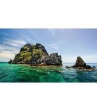โปรแกรมทัวร์,แพ็คเกจทัวร์,ชุมพร,อุทยานแห่งชาติหมู่เกาะชุมพร,ดำน้ำหมู่เกาะชุมพร,ไดร์หมึก,ดำน้ำเกาะลัง