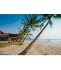 โปรแกรมท่องเที่ยว,โปรแกรมเที่ยว,ตราด,เกาะช้าง, Koh Chang,ดำน้ำดูปะการังหมู่เกาะรัง,เกาะโล้น,เกาะยักษ