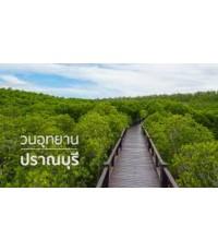 โปรแกรมทัวร์,แพ็คเกจทัวร์,ปราณบุรี,Pranburi