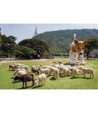 โปรแกรมเอาท์ติ้ง,Outing company,Company Outing Trip,Outing,,สวนผึ้ง,Suan Phung